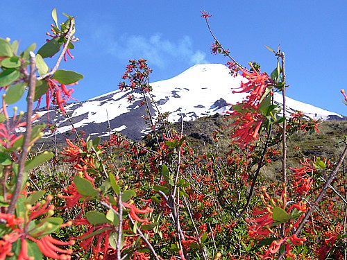 Der Vulkan Villarica in Süd-Chile (© Christian Siebert, Pixelio.de)