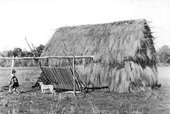 Die historische Aufnahme von 1897 zeigt ein traditionelles Wohnhaus der Mapuche. © Archiv Alavia.com